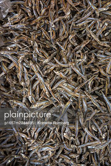 Trockenfische - p1657m2244695 von Kornelia Rumberg