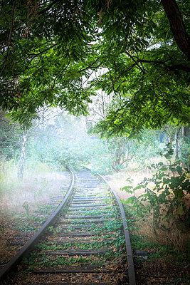 Railway tracks in the fog - p1275m2116291 by cgimanufaktur