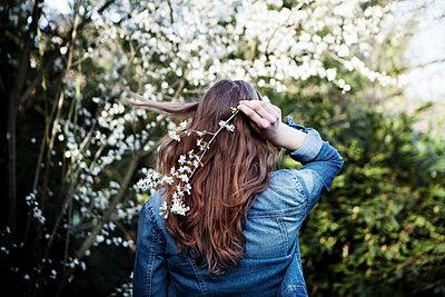 Frühlingsblüten - p1348m1558582 von HANDKE + NEU