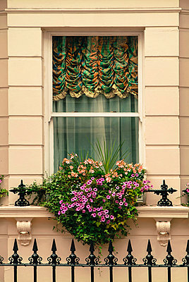 Window decoration - p375m1041603 by whatapicture