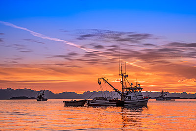 Seiners anchored in Amalga Harbor at sunset awaiting a commercial salmon opening; Juneau, Alaska, United States of America - p442m2074222 by John Hyde