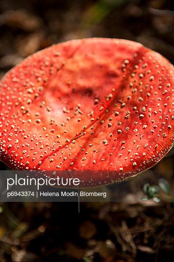 p6943374 von Helena Modin Blomberg
