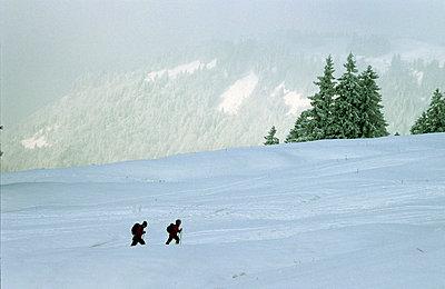 Schweizer Alpen - p2687389 von Andres Wertheim