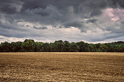 Germany, Thunderous, Forest and field - p1312m2229765 by Axel Killian