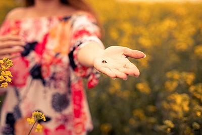 Woman with honeybee on her hand, rape field - p300m2276575 by Sebastian Dorn