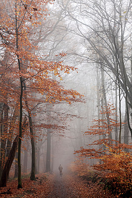 Autumn - p629m987668 by C. A. Vogel