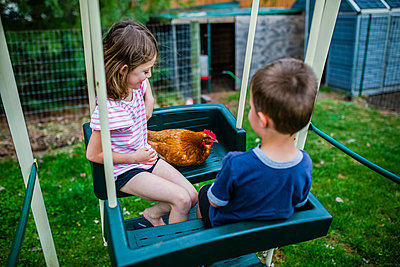 High angle view of siblings with chicken sitting on swing at backyard - p1166m1474080 by Cavan Images