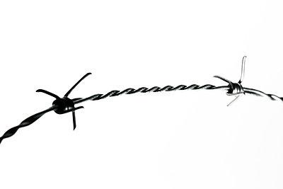 Stacheldraht Close-Up - p4500109 von Hanka Steidle