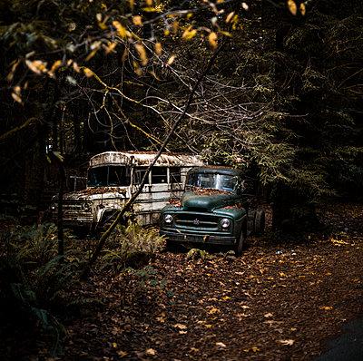 Alte Autos im Wald - p966m890957 von Tobias Leipnitz