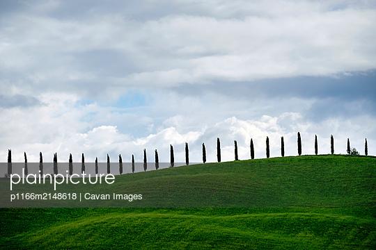 p1166m2148618 von Cavan Images