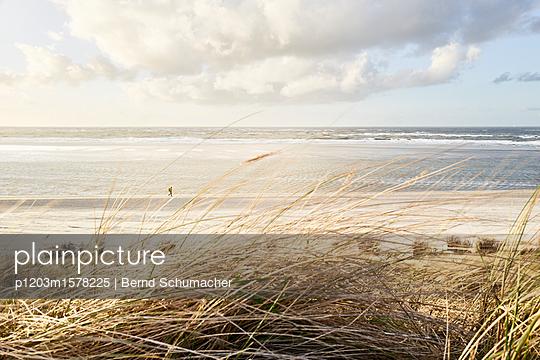 Blick von den Dünen auf die Nordsee - p1203m1578225 von Bernd Schumacher
