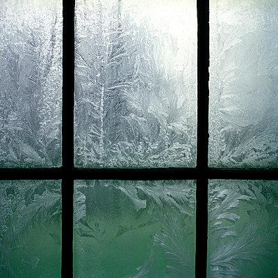 Eis - p1231m1051565 von Iris Loonen