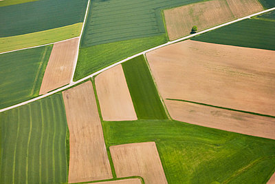 Aerial view, Fields - p913m2125501 by LPF