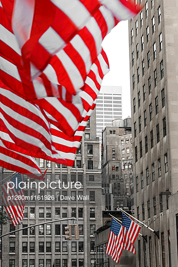 Flags in New York - p1280m1161926 by Dave Wall