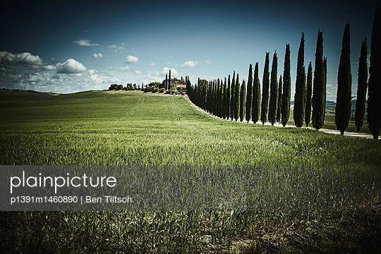 p1391m1460890 by Ben Tiltsch