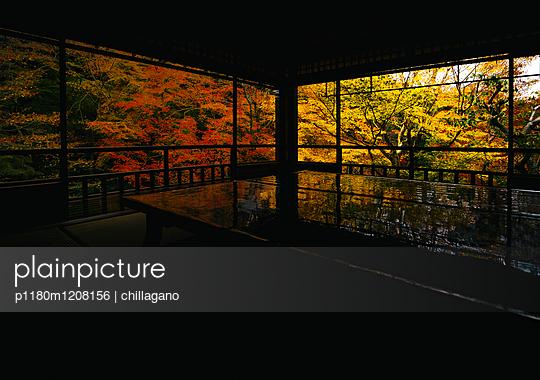 plainpicture | Bildagentur für authentische Fotografie - plainpicture ...