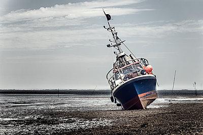 Schiff liegt bei Ebbe auf Grund am Hafen von Pellworm - p1162m2115387 von Ralf Wilken