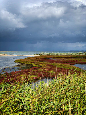 Dramatic weather mood - p382m2284011 by Anna Matzen