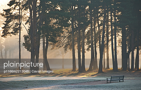 park bench on a frosty morning in Woking / Surrey - p1166m2213048 by Cavan Images