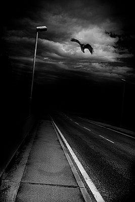 street - p1080m1167183 by Alexandra Stanek
