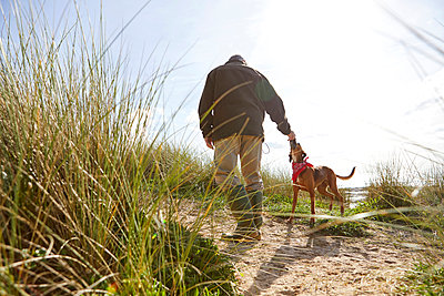 Man walking pet dog on sand dunes, Constantine Bay, Cornwall, UK - p429m1188157 by Janie Airey