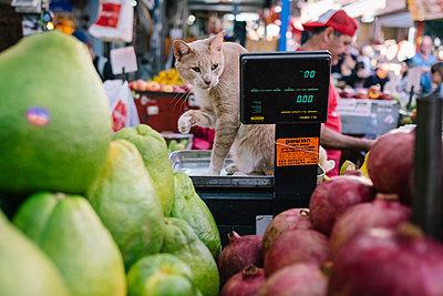Carmel Markt Tel Aviv - p1600m2215313 von Ole Spata