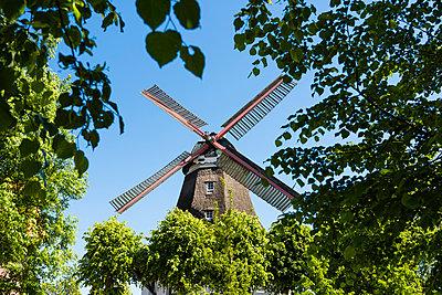Historische Windmühle - p488m1048443 von Bias