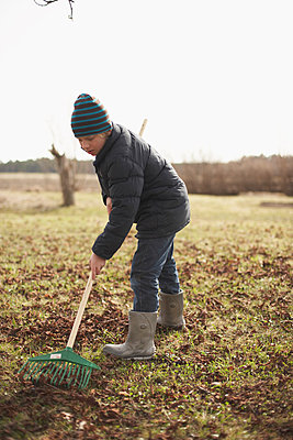 Boy raking garden - p312m956791f by Johan Odmann