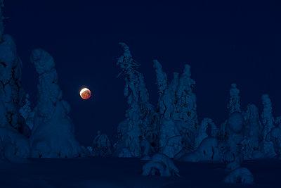 Vollmond im Winter - p1241m2100358 von Topi Ylä-Mononen