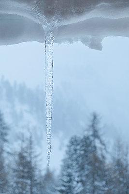 Eiszapfen - p335m1007673 von Andreas Körner