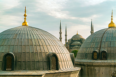 Domes of sultans mausoleums and Sultan Ahmet mosque  - p1332m1502673 by Tamboly