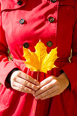 Leaf - p535m1072666 by Michelle Gibson