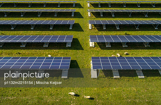 Solar energy and sheep - p1132m2215154 by Mischa Keijser