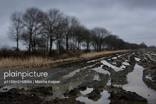 Muddy field - p1132m2168064 by Mischa Keijser
