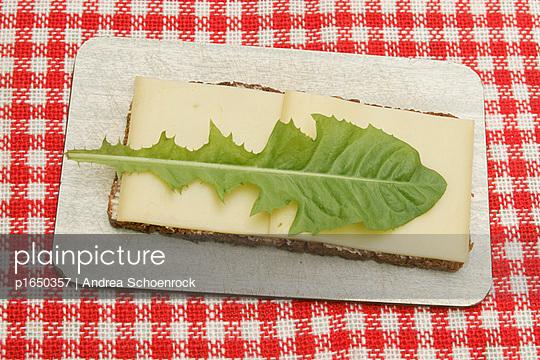 Käsebrot - p1650357 von Andrea Schoenrock