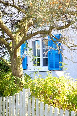 Blaue Fensterläden - p606m1481441 von Iris Friedrich