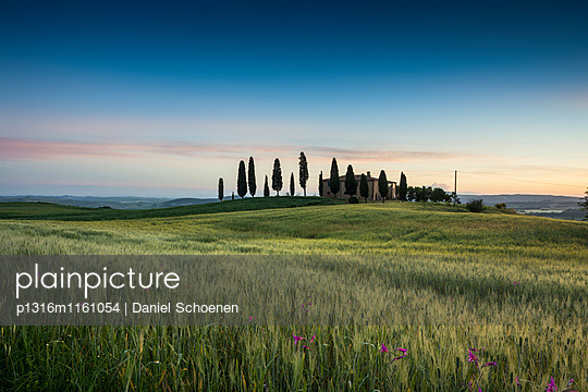 Landschaft bei Pienza, Val d`Orcia, Provinz Siena, Toskana, Italien, UNESCO Welterbe - p1316m1161054 von Daniel Schoenen
