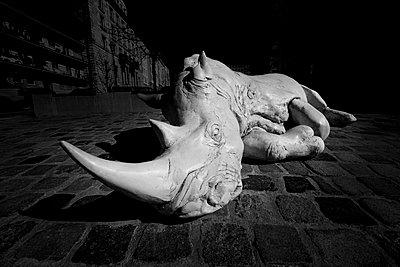 Rhinoceros - p1275m2291182 by cgimanufaktur