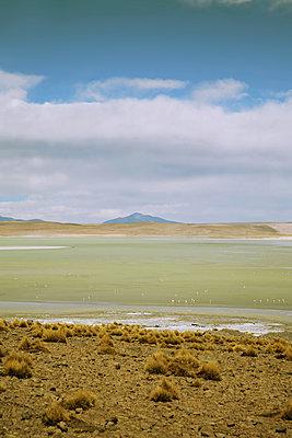 Salar de Chalviri, Bolivien - p1038m1575382 von BlueHouseProject