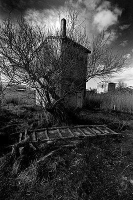 Moor und Sumpf - p8290025 von Régis Domergue