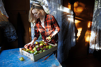 Woman sorting crate of apples on table - p1427m2085121 by Arman Zhenikeyev