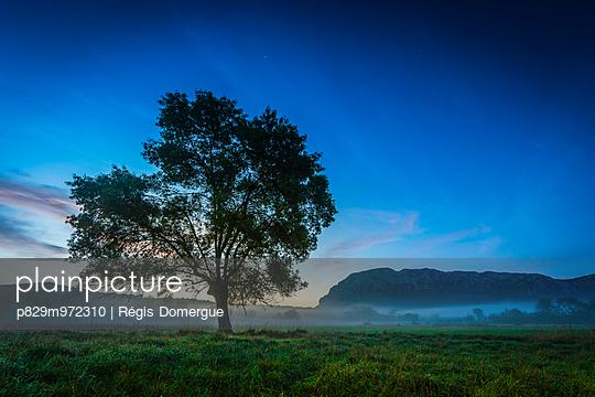 Sunrise near Pic Saint-Loup - p829m972310 by Régis Domergue