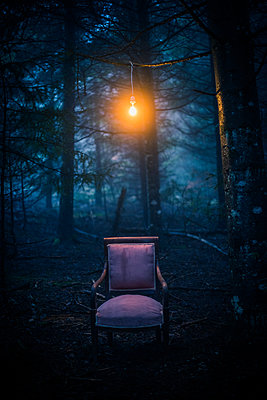 Upholstered chair and light bulb in the forest - p829m2295599 by Régis Domergue