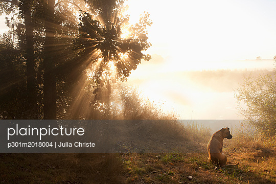 p301m2018004 von Julia Christe