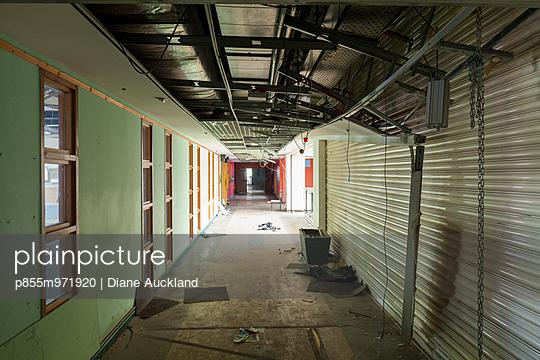 p855m971920 von Diane Auckland
