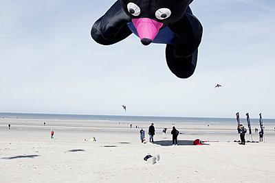 Drachenfest - p1287m1183454 von Christophe Darbelet