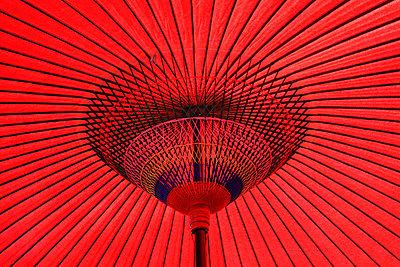 Traditional Japanese paper parasol - p307m747659f by Seigo Yamamura