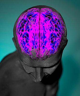 Gehirn - p1275m2168751 von cgimanufaktur