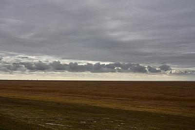 Wolkenband - p877m1475154 von Julia Wagner