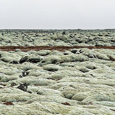 Blick über Lavafelder, Island - p1624m2223725 von Gabriela Torres Ruiz